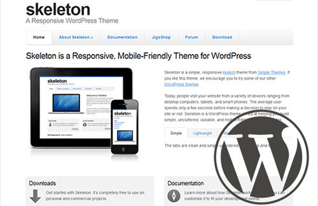 Mobile Friendly WordPress Website